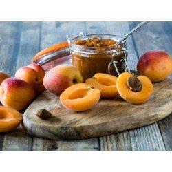 Chutney aux abricots du Valais