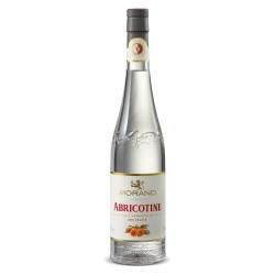 Abricotine Morand